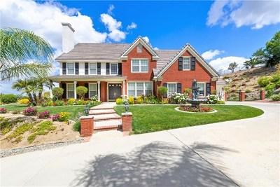 Riverside Single Family Home For Sale: 14070 Ashton Lane