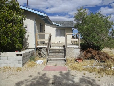 Lucerne Valley Single Family Home For Sale: 36690 Rabbit Springs Road