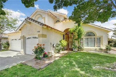 Victorville Single Family Home For Sale: 14809 Showhorse Lane