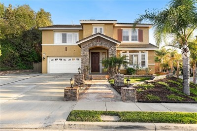 Corona Single Family Home For Sale: 965 Manor Way
