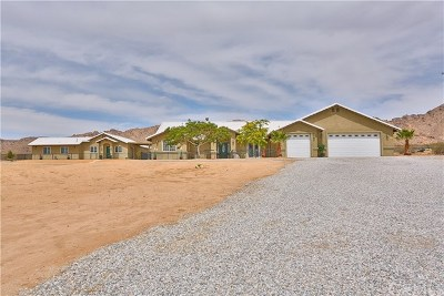 Apple Valley Single Family Home For Sale: 17787 Llanto Road