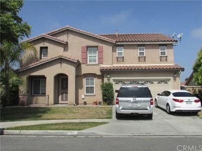 Hemet Single Family Home For Sale: 1031 Dandelion Way
