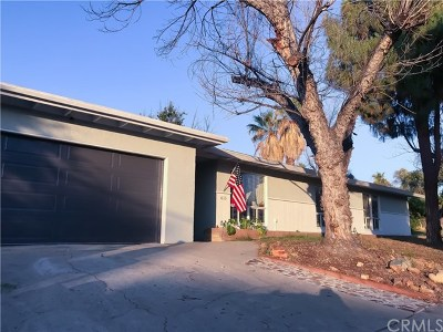 Redlands Single Family Home For Sale: 615 Monterey Street