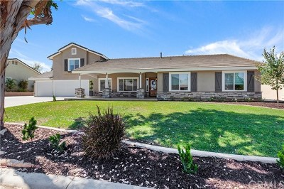 Norco Single Family Home For Sale: 2502 Broken Lance Drive