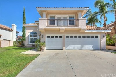 Lake Elsinore Single Family Home For Sale: 45 Corte Madera