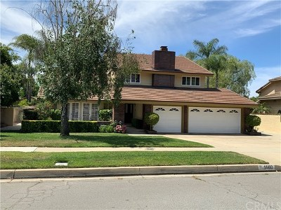 Upland Single Family Home For Sale: 1560 Rosewood Street