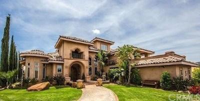 Murrieta Single Family Home For Sale: 37654 Calle De Lobo