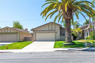 Temecula Single Family Home For Sale: 41483 Avenida De La Reina