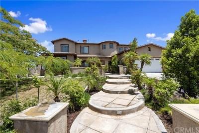 Riverside, Temecula Single Family Home For Sale: 1179 Brasado Way
