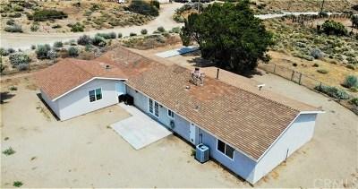Phelan Single Family Home For Sale: 8215 Riggins Road