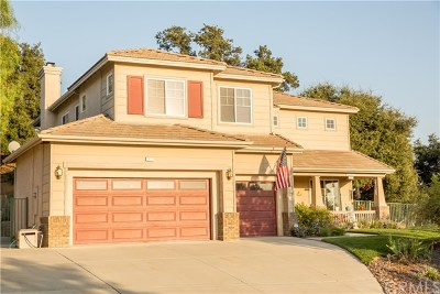 Yucaipa Single Family Home For Sale: 13011 Sycamore Lane
