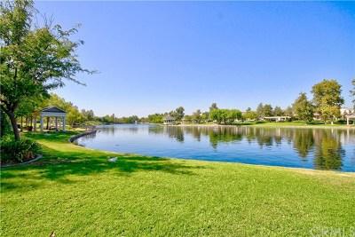 Canyon Lake, Lake Elsinore, Menifee, Murrieta, Temecula, Wildomar, Winchester Rental For Rent: 28790 S Lake Drive