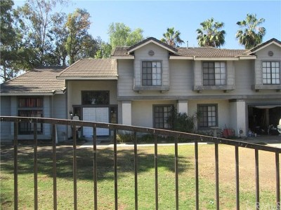 Riverside Single Family Home For Sale: 16925 Mariposa Avenue