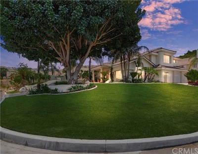 Riverside Single Family Home For Sale: 11310 Breithorn Court