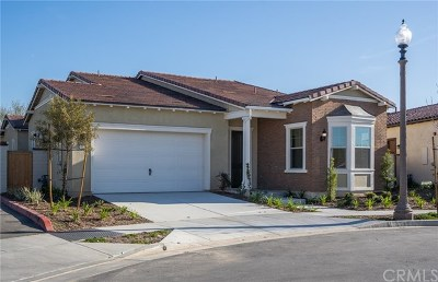 Brea Single Family Home For Sale: 310 S Terrazo Place