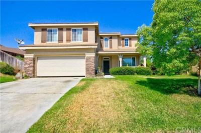 Murrieta Single Family Home For Sale: 27594 Mangrove Street
