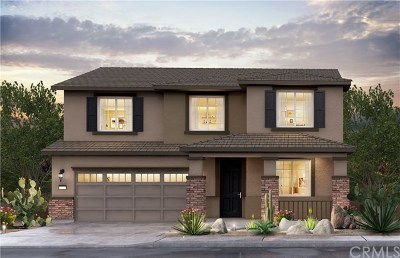 Menifee Single Family Home For Sale: 29725 Rigging Way