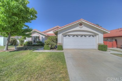 Menifee Single Family Home For Sale: 28189 Cannon Drive