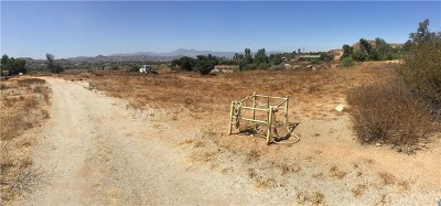 Riverside Residential Lots & Land For Sale: 18175 Newman Avenue