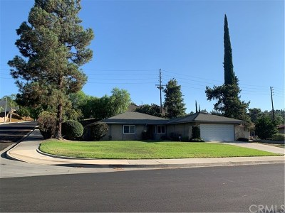 Riverside Single Family Home For Sale: 860 Via Mindi