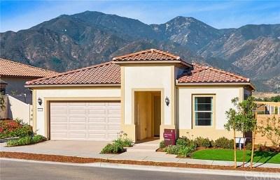 Corona Single Family Home For Sale: 24465 Sunset Vista Drive