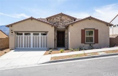 Corona Single Family Home For Sale: 11529 Alton Drive