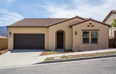 Corona Single Family Home For Sale: 11537 Alton Drive