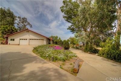 Perris Single Family Home For Sale: 23692 Lemon Avenue
