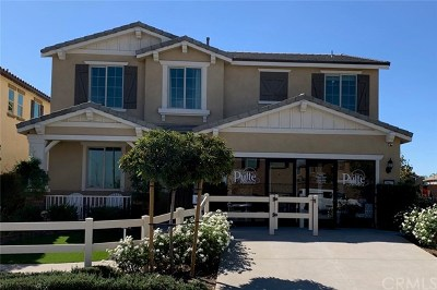 Menifee Single Family Home For Sale: 29677 Rigging Way