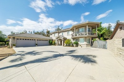 Highland Single Family Home For Sale: 2030 E Foothill Drive