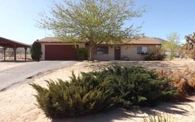 Joshua Tree Single Family Home For Sale: 60485 Latham