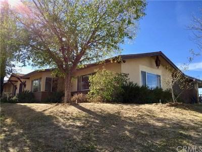 Joshua Tree Single Family Home For Sale: 61786 Onaga Trail