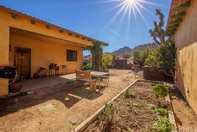Joshua Tree Single Family Home For Sale: 61868 Joshua Trail