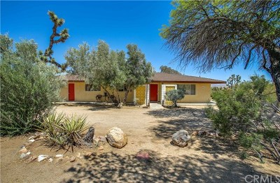 Yucca Valley Single Family Home For Sale: 5407 Paradise View Road