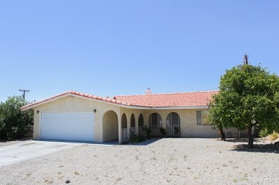 Desert Hot Springs Single Family Home For Sale: 9845 San Felipe Road