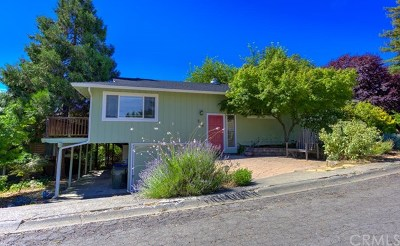 Lakeport CA Single Family Home For Sale: $310,000