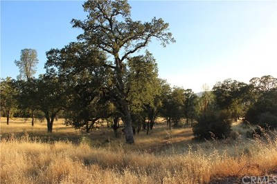 Residential Lots & Land For Sale: 19605 Red Mountain Road