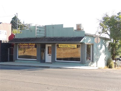 Lakeport CA Commercial For Sale: $250,000