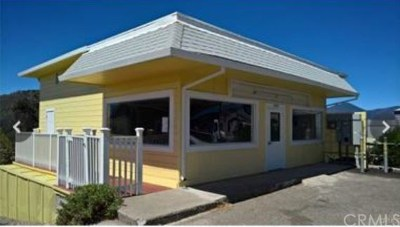 Clearlake CA Commercial For Sale: $279,900