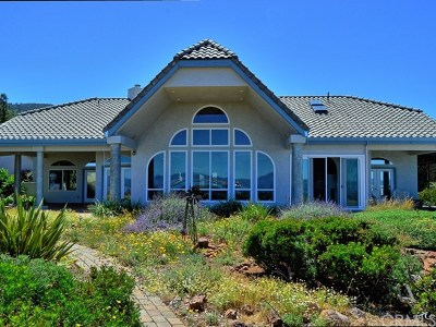 Kelseyville Single Family Home For Sale: 5490 Konocti Road