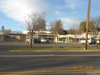 Clearlake CA Commercial For Sale: $375,000