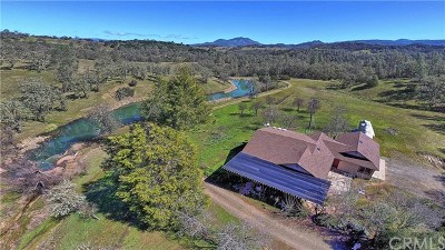 Kelseyville Single Family Home For Sale: 8835 Peterson Lane