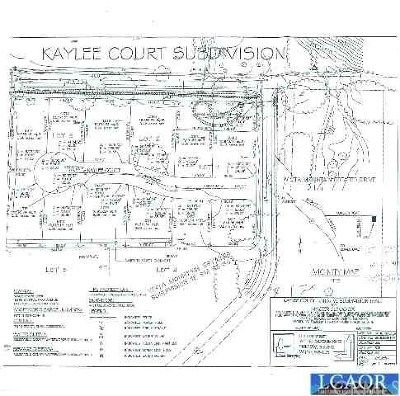Kelseyville CA Residential Lots & Land For Sale: $285,000