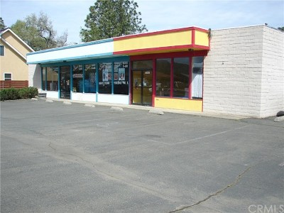 Clearlake CA Commercial For Sale: $315,000