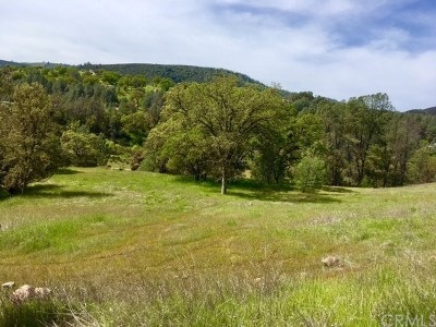 Residential Lots & Land For Sale: 3105 Wolf Creek Road