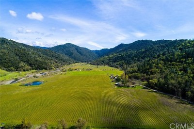 Lake County Residential Lots & Land For Sale: 2000 Clover Valley Road