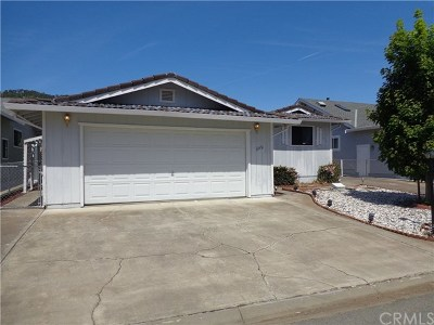 Clearlake Oaks Single Family Home For Sale: 13352 Driftwood