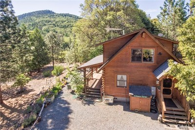 Kelseyville Single Family Home For Sale: 9261 Wildcat Road