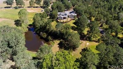 Lakeport Single Family Home For Sale: 1286 Crystal Lake Way