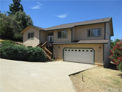 Kelseyville Single Family Home For Sale: 10368 Pebble Beach Way